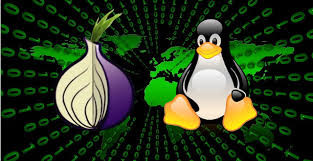 Essential dos and don'ts for Tor Network ( Detailed Guide)
