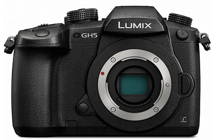 best affordable camera for wildlife photography
