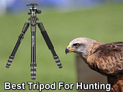 Best Tripod For Hunting
