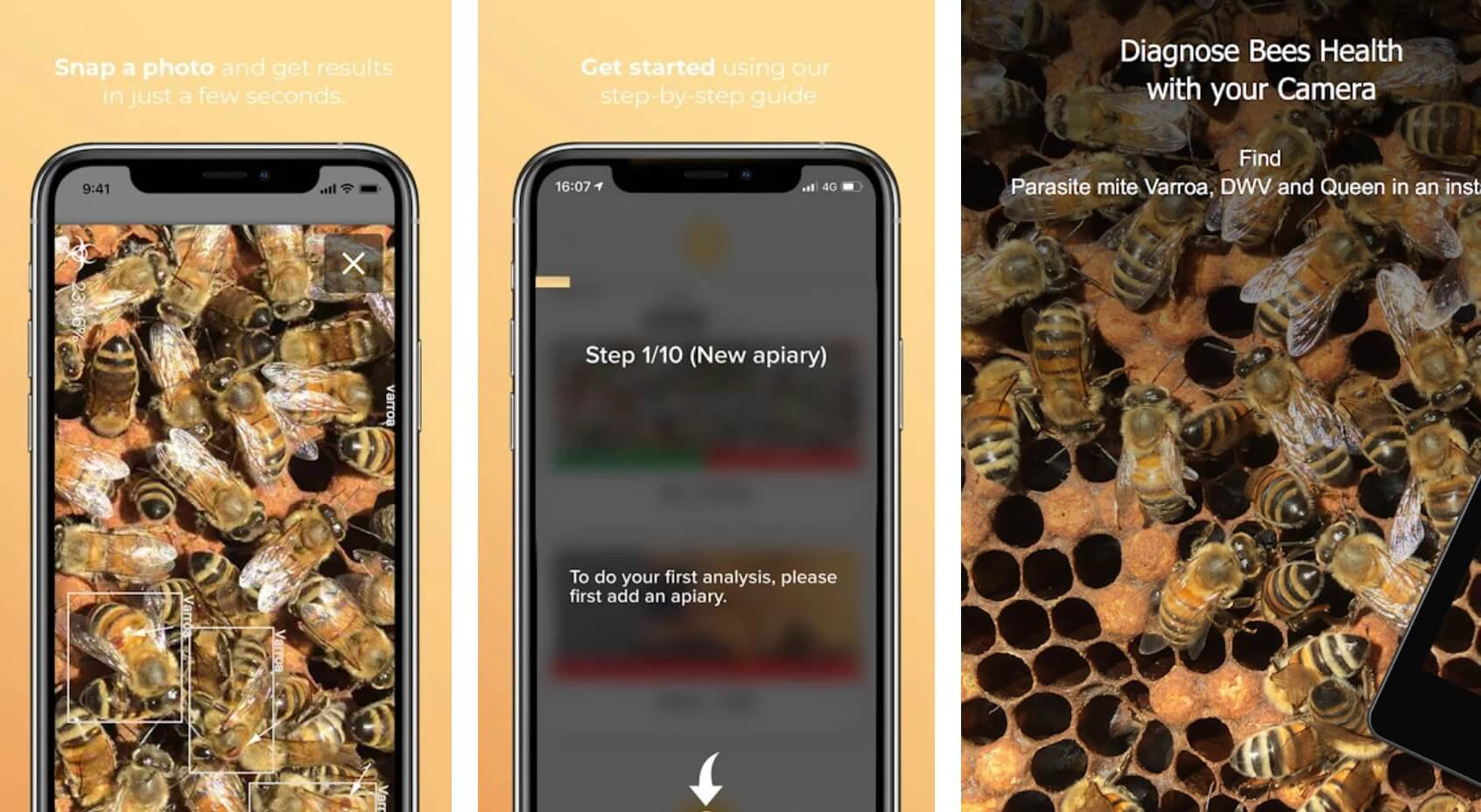 11 Best Beekeeping Apps For Android and iOS Devices