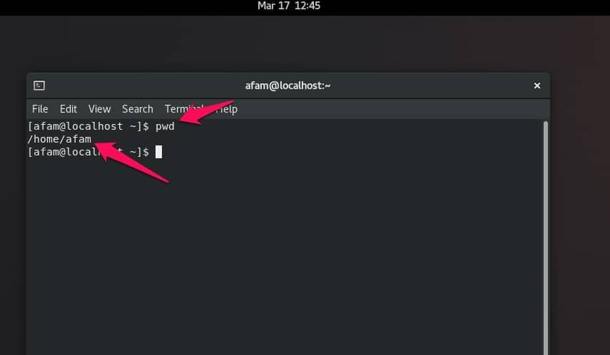 18 Linux Commands You Could Run In The Terminal