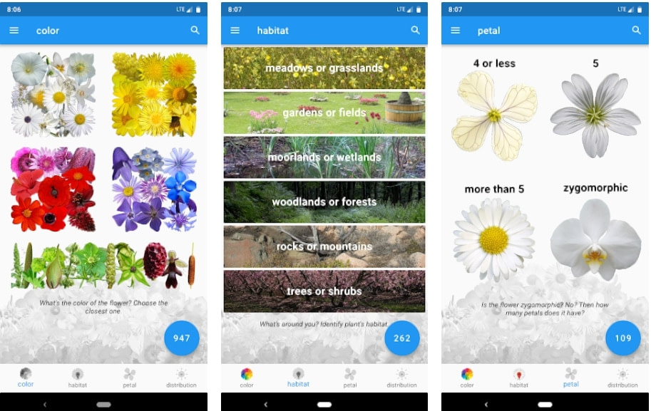 13 Of The Best Plant Identification Apps to Identify Plants